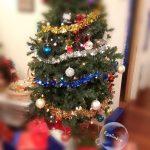 La magie de Noël - Sapin - Egalimère